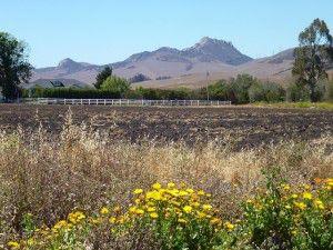 De La Osa Valley Road