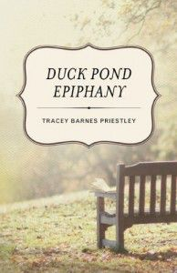 duck pond epiphany