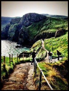 teresa ireland photo 1013a