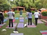 Stollar gentle yoga Indai