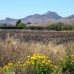 SLO De La Osa Valley Road