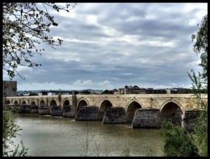 teresa mesquita bridge