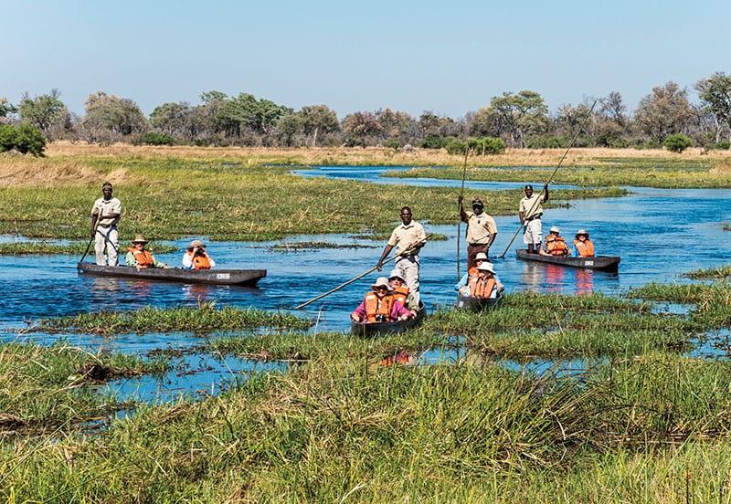 Mokoru in the Okavango Delta