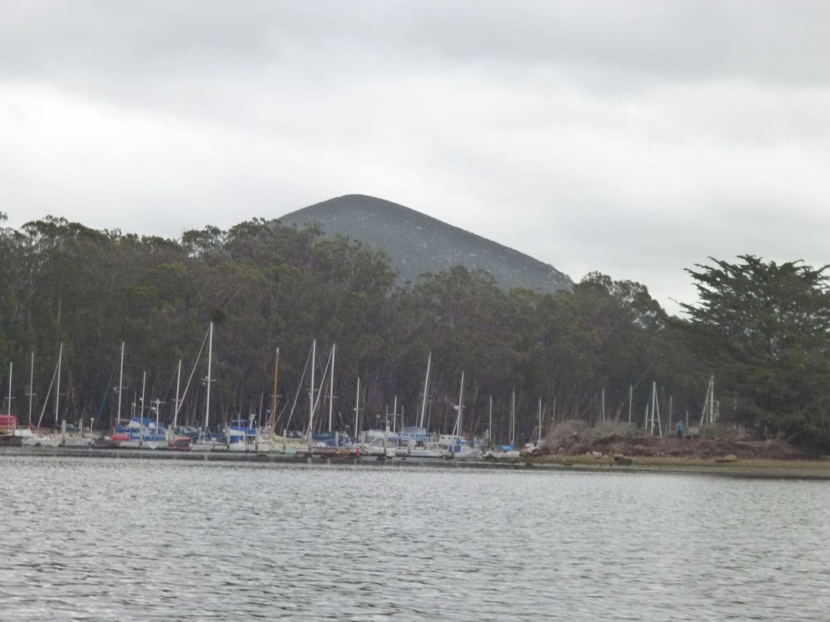 Back Bay Marina_1