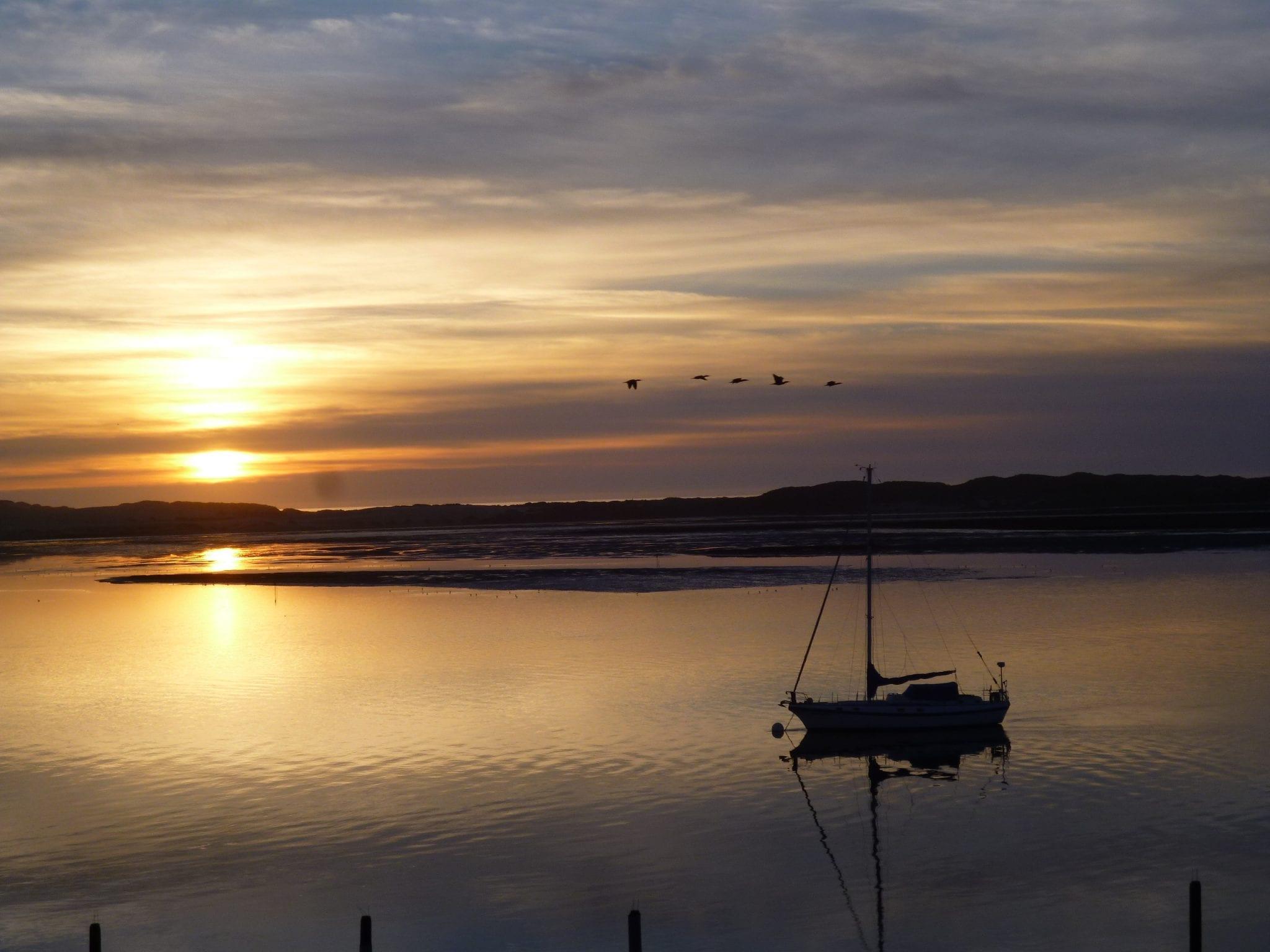 Best Sunset with birds