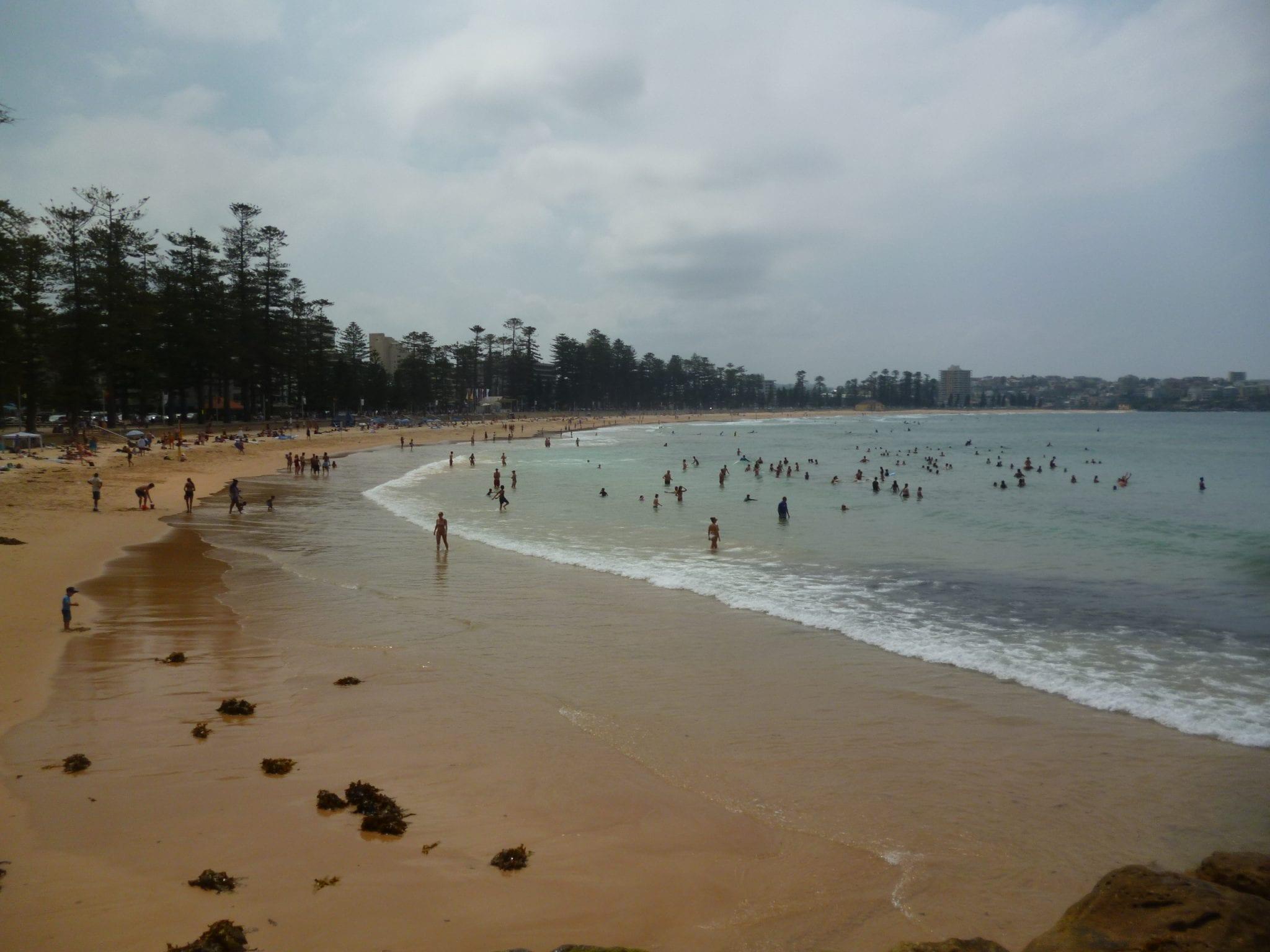 Manly Beach-Linda Ballou