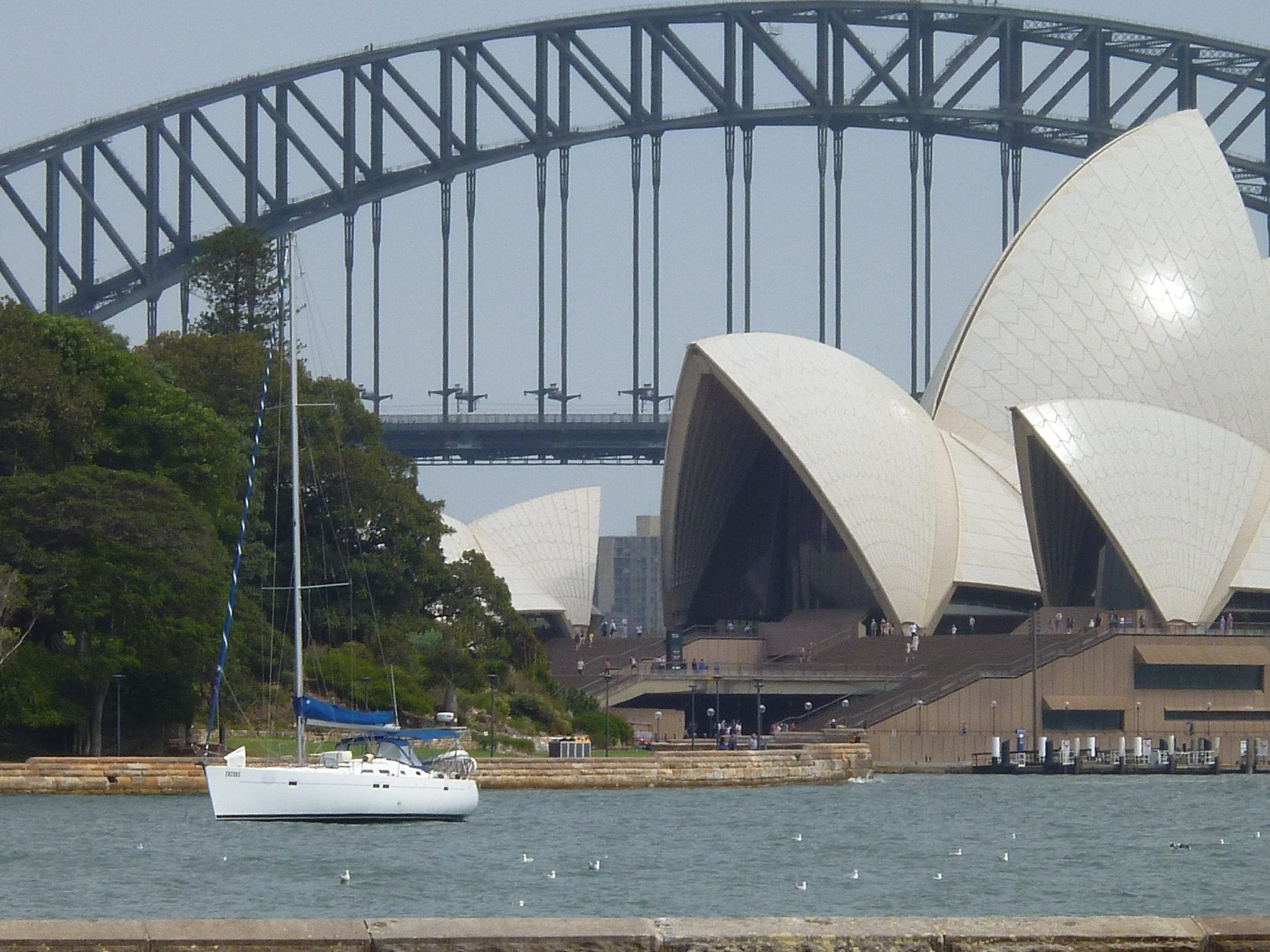 Sydney opera house and bridge-Linda Ballou