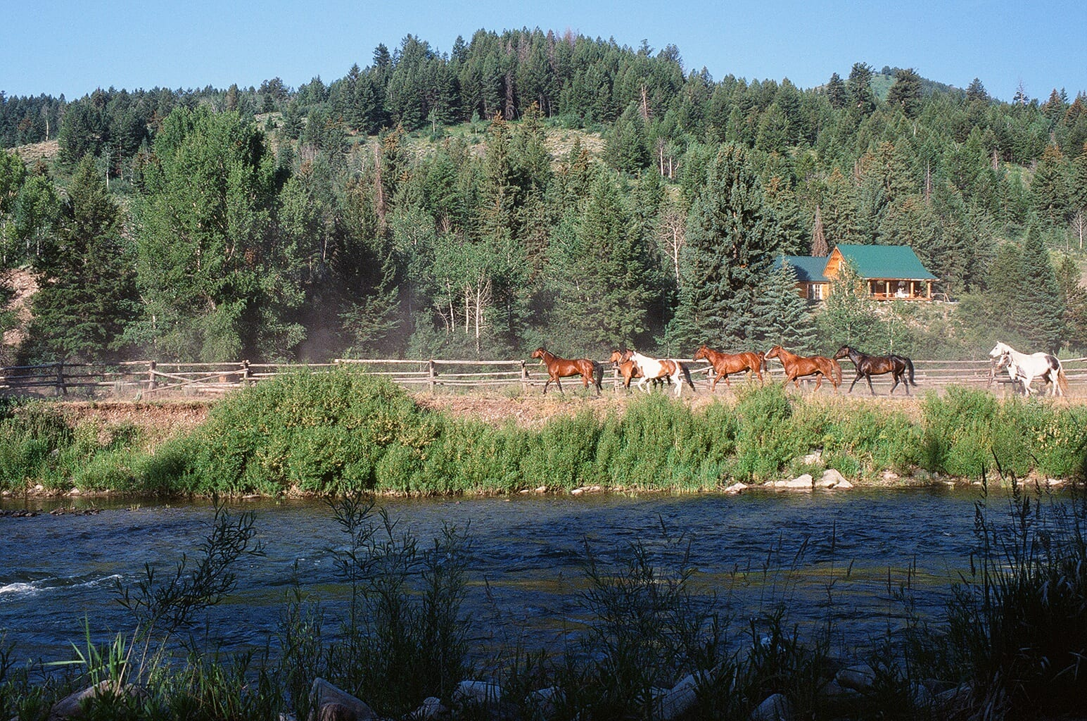 Spotted Horse Ranch-Wyoming -Linda Ballou