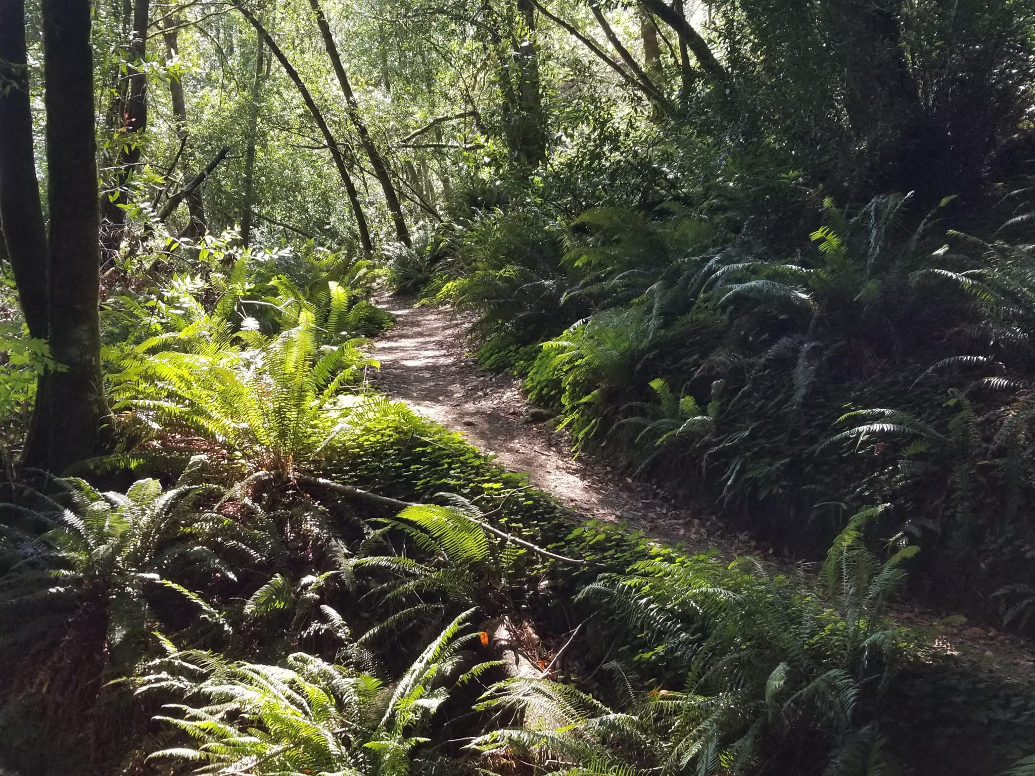 Loeb River Walk-Brookings